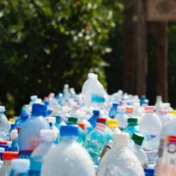 Start living a zero waste lifestlye today.
